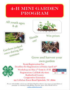 Cover photo for 4-H Mini Garden Program