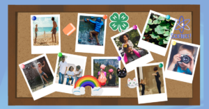 Cover photo for 4-H Healthy Living Challenge