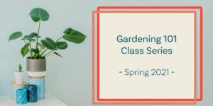 gardening 101 class series
