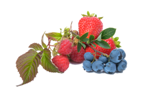 Strawberries and blueberries with stems